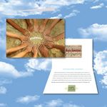 Custom Cloud Nine Diversity Music Download Greeting Card