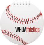 Custom SportsPad - Paperboard Baseball