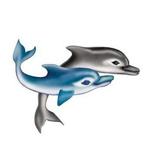 Two Dolphins Temporary Tattoo