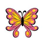 Custom Orange and Pink Butterfly