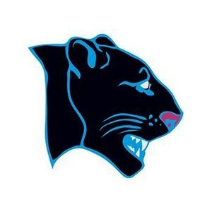Panther Temporary Tattoo