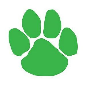 Green Paw Print Temporary Tattoo