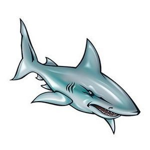 Illustrated Shark Temporary Tattoo