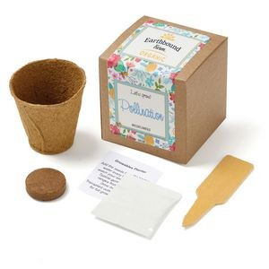 Wildflowers Planter in Kraft Gift Box