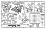 Custom Beautiful Butterflies - Imprintable Colorable Placemat