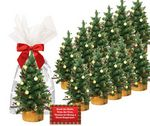 Custom 12-Mini Tree Decorating Kits