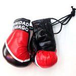 Custom Mini Car Boxing Gloves