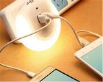 Custom USB mobile phone charger + light automatically Nightlight
