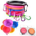 Custom Portable Silicone Folding Pet Feeding Bowl With Carabiner
