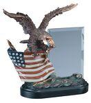 Custom Patriotic Eagle Award