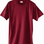 Custom Hanes Adult ComfortBlend EcoSmart 50/50 Tight Knit Short Sleeve T-Shirt