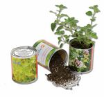 Custom Single Herb Garden Can w/Potting Soil & Seeds