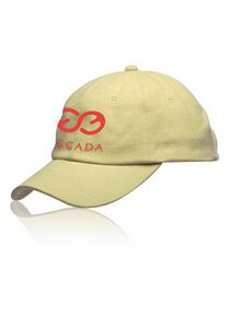 6-Panel Brushed Cotton Unconstructed Cap (Embroidery)