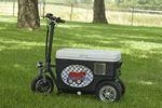 Custom Blue Cruzin Cooler 500 Watt