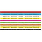 Custom Plastic Colored Yardstick