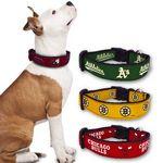 Custom Adjustable Ribbon Dog Collar