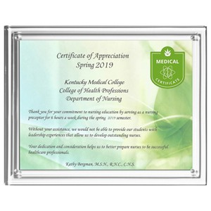"Magnetic Clear on Clear Acrylic Certificate Frame (10 1/4""x 12 1/4""x 1/2"")"