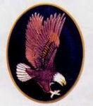 Custom American Eagle Cloisonne Medallion Bolo Tie