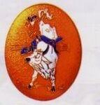 Custom Bull Rider Cloisonne Medallion Bolo Tie