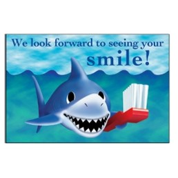 "Smiling Shark Stock Postcard (4""x6"")"