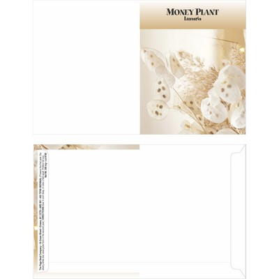 Mailable Series Money Plant Seeds- Digital Print- Front & Back Imprint