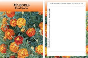Custom Standard Series Marigold Sparky Seed Packet - Digital Print /Packet Back Imprint