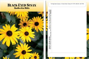 Custom Standard Series Black Eyed Susan Seed Packet - Digital Print/Packet Back Imprint
