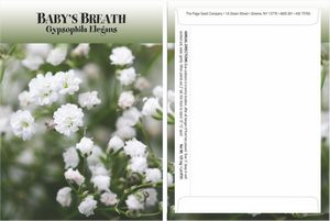 Custom Standard Series Baby's Breath Seed Packet - Digital Print/Packet Back Imprint