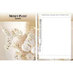 Standard Series Money Plant Seed Packet - Digital Print /Packet Back Imprint