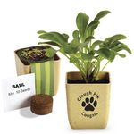 Custom Flower Pot Set w/ Basil Seeds