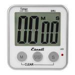 Custom Extra Large Display Digital Timer