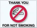 Custom V-T No Smoking Static Cling Stickers (250 per Pack)