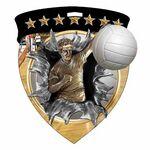 Custom Color Burst Medals/Volleyball