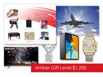 Custom $1250 Gift of Choice Amber Level Gift Booklet