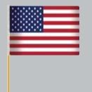 Custom Poly U.S Flag (12
