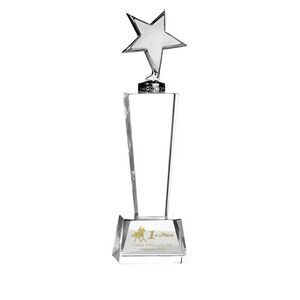Trophy Award - Silver Metal Star mounted on Crystal Stand