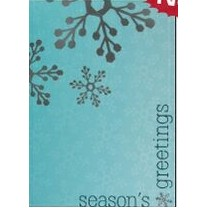 "Season's Greetings Blue & Silver Holiday Greeting Card (5""x7"")"