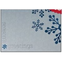 "Season's Greetings Silver & Blue Holiday Greeting Card (5""x7"")"