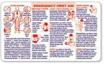 Custom 2-Color Information Panel- Emergency First Aid (Spanish Version)