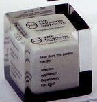 Custom Cube Lucite Classic Shape Embedment (2