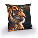 Custom Large Pillow with Full Color Imprint