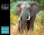 Custom Galleria Wall Calendar 2018 International Wildlife (Low Price )