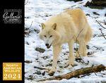 Custom Galleria Wall Calendar 2018 North American Wildlife (Low Price )