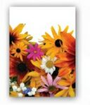 Custom Wildflower Mix Simply Floral Seed Packets - Imprinted