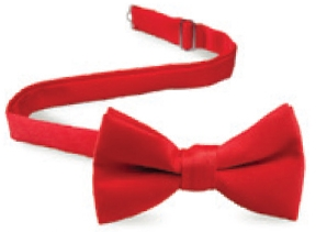 Edwards Satin Bow Tie