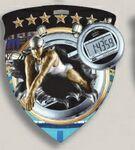 Custom Female Swimming Stock Full Color Burst Medal (3