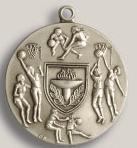 Custom Triathlon Stock Die Struck Medal (1.75