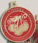 Custom Spin Cast Medal (3