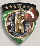 Custom Football Stock Full Color Burst Medal (3