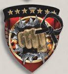 Custom Martial Arts Stock Full Color Burst Medal (3